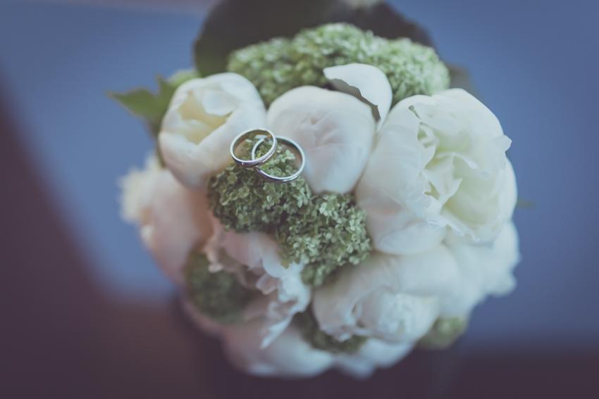 fotografía original de los anillos