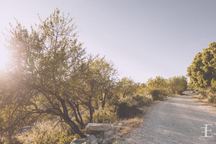 paisaje granada sierra