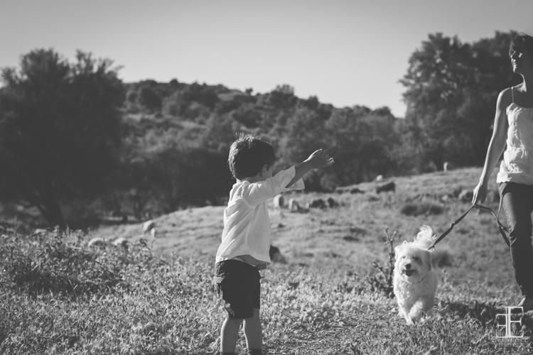 niño jugando con su perro en el campo